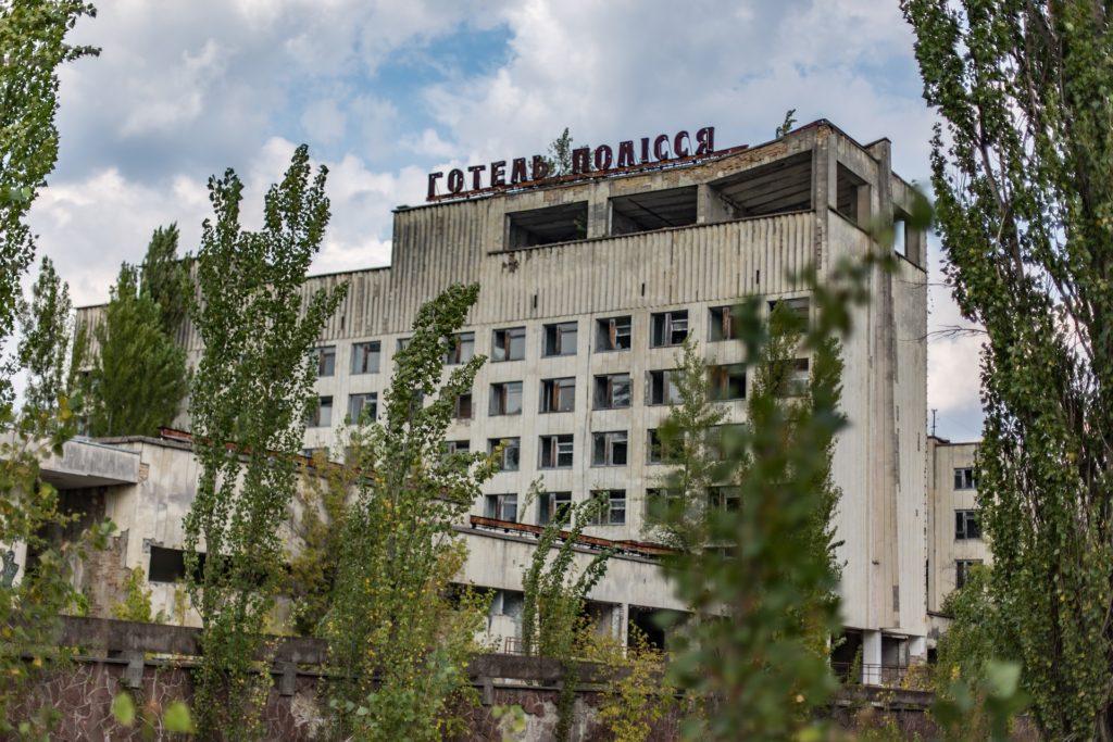 chernobyl que paso, chernobyl perros radioactivos, chernobyl perros, perros salvajes chernobyl, experiencias en línea airbnb, airbnb,