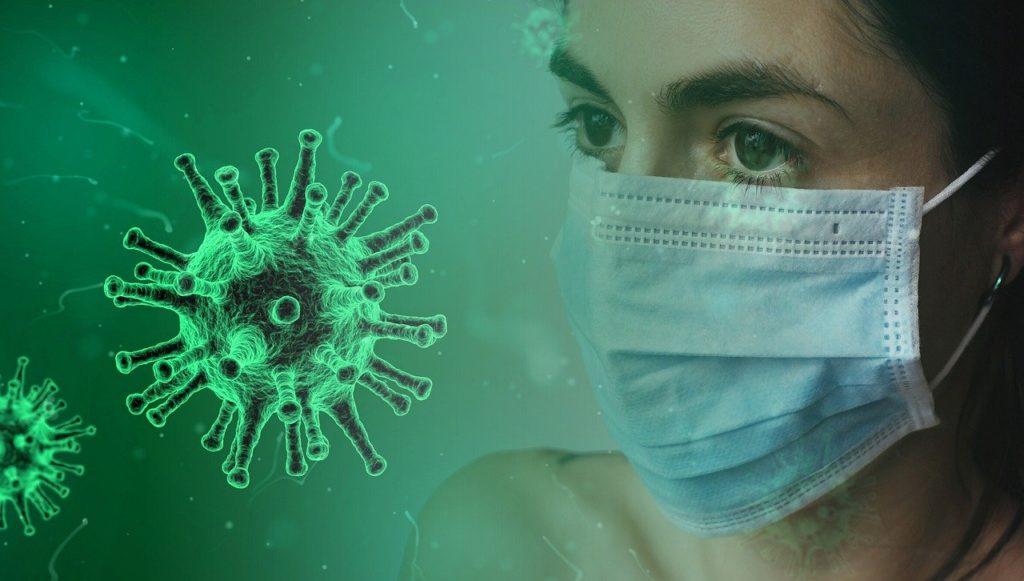 covid19, pandemia, que es covid, que es pandemia, animales covid, parques y zoologicos en crisis